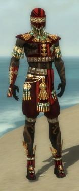 Ritualist Elite Luxon Armor M dyed front.jpg