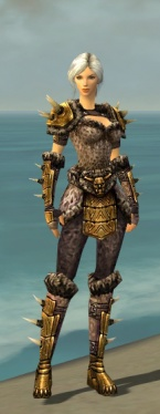 Warrior Elite Charr Hide Armor F nohelmet.jpg