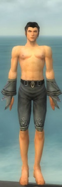 Elementalist Kurzick Armor M gray arms legs front.jpg