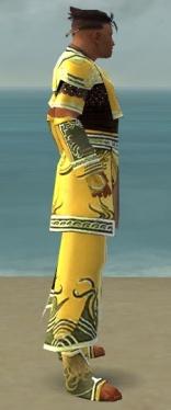 Monk Deldrimor Armor M dyed side.jpg