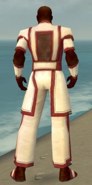 Monk Sacred Armor M dyed back.jpg
