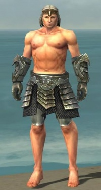 Warrior Elite Templar Armor M gray arms legs front.jpg