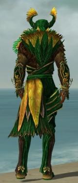 Disciple of Melandru M dyed back.jpg