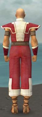 Monk Krytan Armor M dyed back.jpg