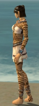 Monk Labyrinthine Armor F dyed side.jpg