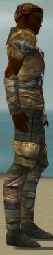 Ranger Tyrian Armor M gray side alternate.jpg