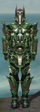 Warrior Elite Kurzick Armor M dyed front.jpg
