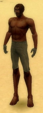 Mesmer Norn Armor M gray arms legs front.jpg