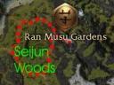Seijun Woods map.jpg