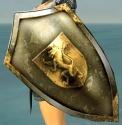 Tall Shield