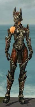 Warrior Kurzick Armor F gray front.jpg