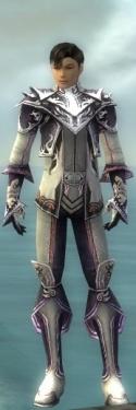 Elementalist Deldrimor Armor M gray front.jpg