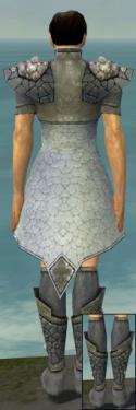 Elementalist Stoneforged Armor M gray chest feet back.jpg
