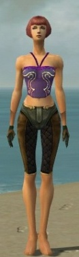 Mesmer Ancient Armor F gray arms legs front.jpg