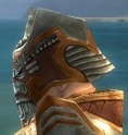 Warrior Asuran Armor M dyed head back.jpg