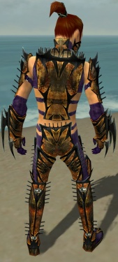 Assassin Elite Exotic Armor M dyed back.jpg