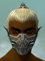Assassin Elite Luxon Armor M gray head front.jpg