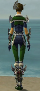 Assassin Norn Armor F dyed back.jpg