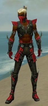 Assassin Luxon Armor M dyed front.jpg