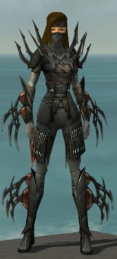 Assassin Ancient Armor F gray front.jpg