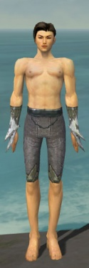 Elementalist Iceforged Armor M gray arms legs front.jpg