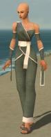 Monk Ascalon Armor F gray front.jpg