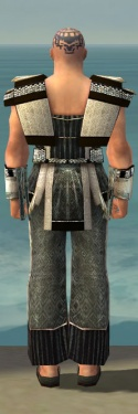 Monk Elite Sunspear Armor M gray back.jpg
