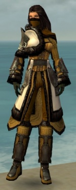 Ranger Norn Armor F dyed front.jpg