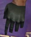 Mesmer Istani Armor M gloves.jpg