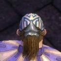 Monk Kurzick Armor M gray head back.jpg