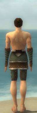Ranger Elite Studded Leather Armor M gray arms legs back.jpg