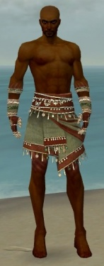 Ritualist Exotic Armor M gray arms legs front.jpg