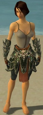Warrior Elite Luxon Armor F gray arms legs front.jpg