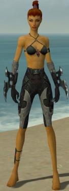 Assassin Kurzick Armor F gray arms legs front.jpg