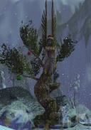Beacon of Melandru