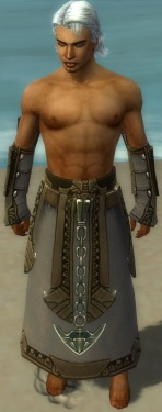 Dervish Asuran Armor M gray arms legs front.jpg