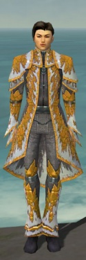 Elementalist Iceforged Armor M dyed front.jpg