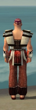 Monk Elite Sunspear Armor M dyed back.jpg