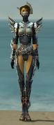 Assassin Asuran Armor F gray front.jpg