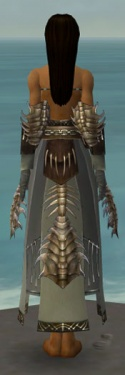 Dervish Primeval Armor F gray arms legs back.jpg