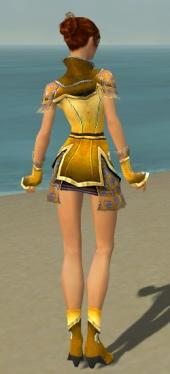 Elementalist Shing Jea Armor F dyed back.jpg