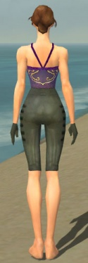 Mesmer Rogue Armor F gray arms legs back.jpg