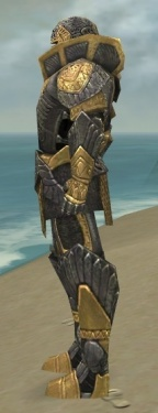 Warrior Elite Platemail Armor M dyed side.jpg