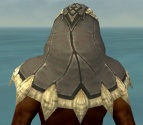 Dervish Norn Armor M gray head back.jpg