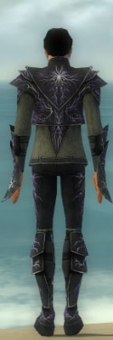Elementalist Elite Stormforged Armor M gray back.jpg