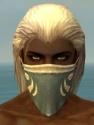 Ranger Shing Jea Armor M gray head front.jpg