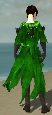 Ravenheart Witchwear F dyed back.jpg