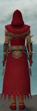 Dervish Sunspear Armor M dyed back.jpg