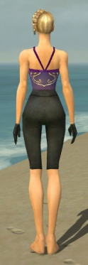 Mesmer Ascalon Armor F gray arms legs back.jpg