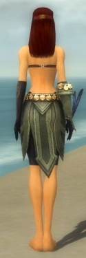 Ritualist Elite Kurzick Armor F gray arms legs back.jpg